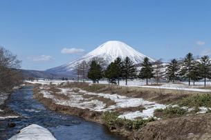 北海道 初春の羊蹄山の風景の写真素材 [FYI04837786]
