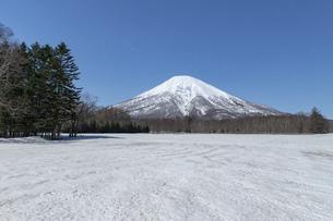 北海道 初春の羊蹄山の風景の写真素材 [FYI04837796]