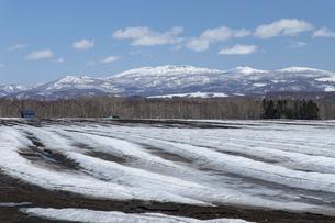 北海道 初春の羊蹄山の風景の写真素材 [FYI04837799]