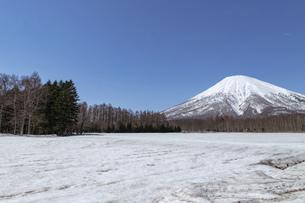 北海道 初春の羊蹄山の風景の写真素材 [FYI04837800]