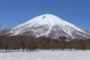 北海道 初春の羊蹄山の風景の写真素材 [FYI04837801]