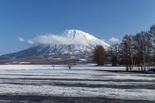 北海道 初春の羊蹄山の風景の写真素材 [FYI04837818]