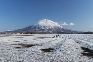 北海道 初春の羊蹄山の風景の写真素材 [FYI04837819]