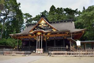 大崎八幡宮 拝殿の写真素材 [FYI04837980]