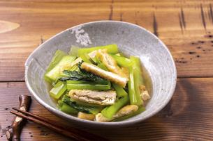 小松菜の煮浸しの写真素材 [FYI04838068]