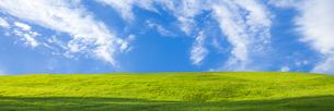 緑の草原と青空パノラマの写真素材 [FYI04838324]