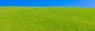 緑の草原と青空パノラマの写真素材 [FYI04838325]