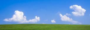 緑の草原と青空パノラマの写真素材 [FYI04838331]