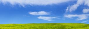緑の草原と青空パノラマの写真素材 [FYI04838333]
