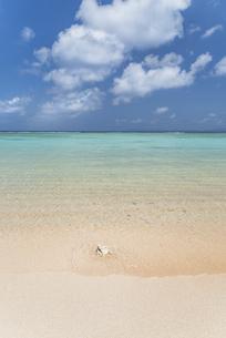 波照間島ニシ浜2021の写真素材 [FYI04838532]