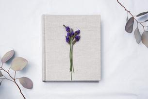 自然光と植物の影が差し込む、白のファブリックに置かれた本の写真素材 [FYI04838593]