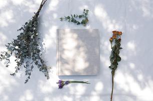 自然光と植物の影が差し込む、白のファブリックに置かれた本の写真素材 [FYI04838596]
