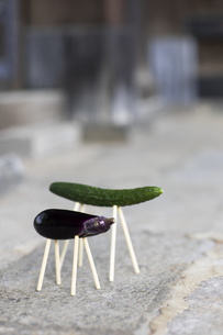 お盆に飾られる精霊馬の写真素材 [FYI04838679]