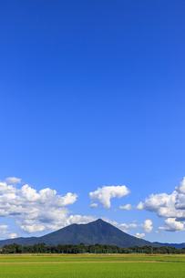 茨城県 水田と筑波山の写真素材 [FYI04838756]