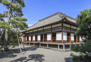 庭から見る掛川城二の丸御殿の写真素材 [FYI04840295]