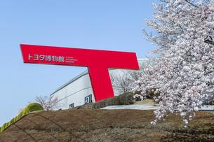 満開のサクラを見るトヨタ博物館の写真素材 [FYI04840349]