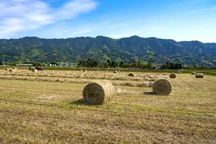 福岡県 耳納連山を背景に久留米市の農村風景の写真素材 [FYI04840475]