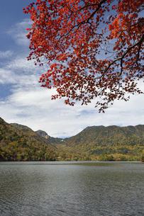秋の湯ノ湖の写真素材 [FYI04840518]