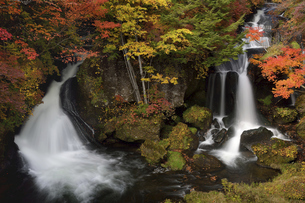奥日光 秋の竜頭の滝の写真素材 [FYI04840519]