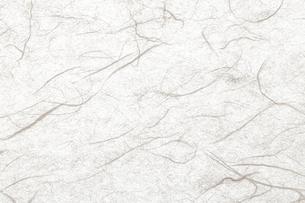 生成りの和紙素材の写真素材 [FYI04840537]