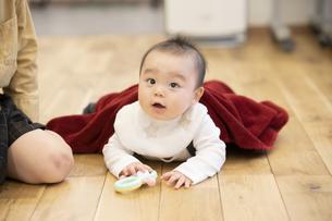 床をハイハイする赤ちゃんの写真素材 [FYI04840593]