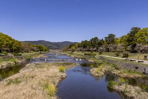 北大路橋からの新緑の賀茂川の写真素材 [FYI04840817]