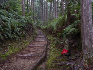 熊野古道の写真素材 [FYI04840916]