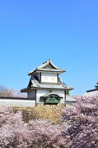 北陸金沢城 石川櫓と桜に快晴の空の写真素材 [FYI04841265]