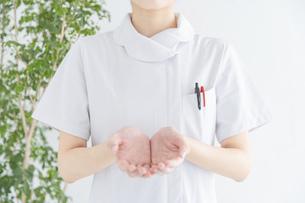 白衣の女性の手の写真素材 [FYI04841304]