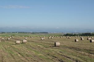 牧草ロールが並ぶ草原と飛行場の写真素材 [FYI04841339]