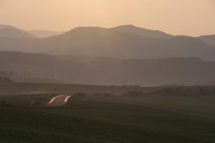 雨上がりの丘陵地帯の写真素材 [FYI04841342]