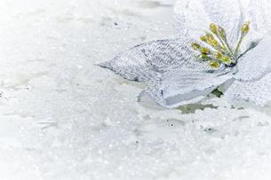 敷き詰められたクリスタルのビーズとシルバーの花のオーナメントの写真素材 [FYI04841423]