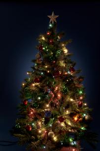 クリスマスツリーの写真素材 [FYI04841429]