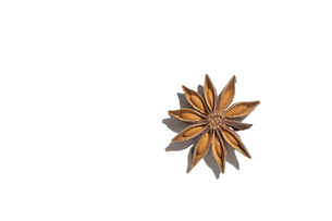 八角 スターアニス クローズアップの写真素材 [FYI04841456]