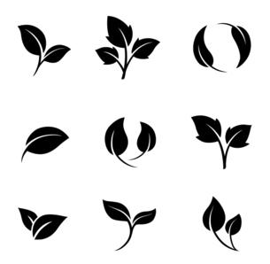 葉のアイコンセットのイラスト素材 [FYI04841618]