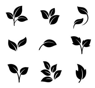 葉のアイコンセットのイラスト素材 [FYI04841619]