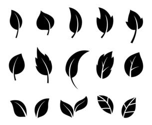 葉のアイコンセットのイラスト素材 [FYI04841620]
