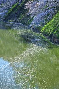 霞城公園お堀の写真素材 [FYI04841735]