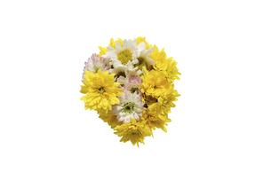 菊の花束の写真素材 [FYI04842136]