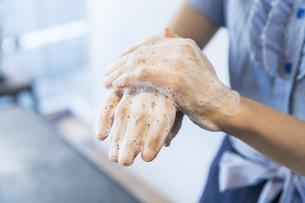 手を洗う女性の写真素材 [FYI04842535]