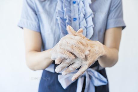 手を洗う女性の写真素材 [FYI04842537]