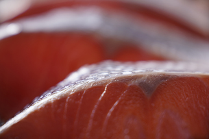 紅鮭の写真素材 [FYI04842570]