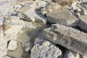 エチオピア・ダナキル砂漠のアサレ塩湖で採掘される岩塩ブロックの写真素材 [FYI04842582]