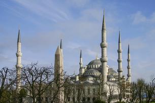 トルコ・イスタンブールの世界遺産ブルーモスクの写真素材 [FYI04842639]