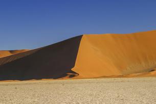 朝日を浴びてアプリコット色に染まるナミブ砂漠の砂丘の写真素材 [FYI04842708]