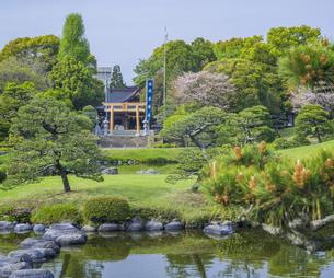 熊本県 風景 水前寺成趣園の写真素材 [FYI04842872]