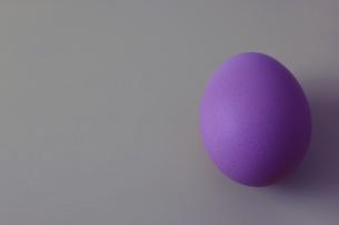 着色された鶏卵の写真素材 [FYI04842880]