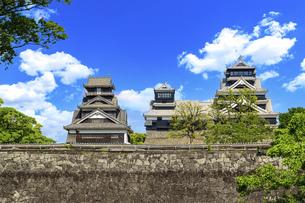 熊本城「うららかな春の季節 最高に美しい城と青空風景」復興最新写真の写真素材 [FYI04843110]