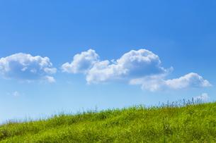 緑の草原と青空に雲の写真素材 [FYI04843162]