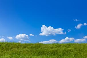 緑の草原と青空に雲の写真素材 [FYI04843163]